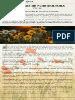 Boletín Flores