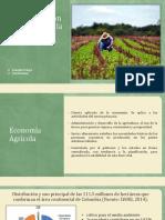 Sector de la Agricultura.pptx
