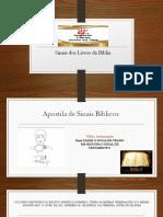 Apost. sinais Bíblicos.pdf
