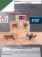 diapositiva dengue, chiku, zika.pptx