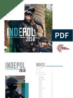 INDEPOL-2018-1
