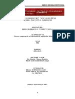 DERECHO PROCESAL CONSITUCIONAL ACT N° 11