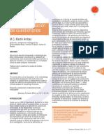 Diseño y Validacion de cuestionarios.pdf
