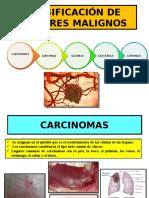 Clasificación de Tumores Malignos Maoly