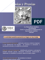 Gnosias y Praxias-Presentacion