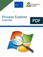 Process Explorer Essentials - Antun Peicevic