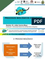3-Procesos-aerobios