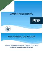 aminopenicilinas -