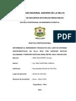 DETERMINAR EL RENDIMIENTO PRODUCTIVO DEL CAFÉ EN SISTEMAS AGROFORESTALES EN VILLA RICA CON ESPECIES NATIVAS (ULCUMANO) Y ESPECIES EXÓTICAS (PINO) ENTRE 1400 A 1600 M.S.N.M.