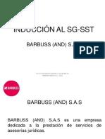 Inducción Sg Sst