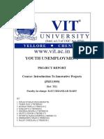 Report IIP