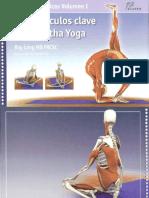 Los Musculos Claves en El Hatha Yoga