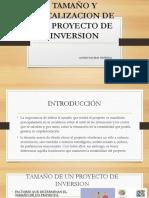 TAMAÑO-Y-LOCALIZACION-DE-UN-PROYECTO-DE-INVERSION.pptx