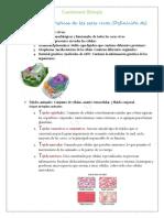 Biologia Cuestionario