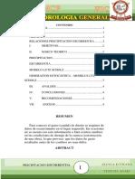 RELACIONES PRECIPITACION ESCORRENTIA.docx