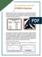 INDUSTRIA-DE-COLORANTES-NATURALES.docx