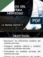 Modelos Del Sistema Nervioso
