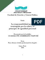 TESIS Zambrano Guadalupe.pdf