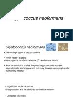 Cryptococcus Aerospace