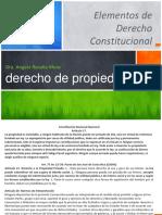 Derecho de Propiedad Constitucional