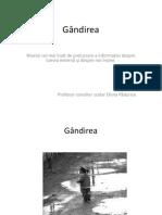 g_ndirea