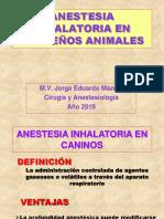 Anestesia Inhalatoria en pequeños Animales.
