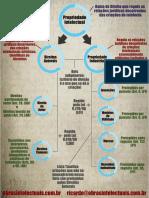 Infografico Propriedade Intelectual