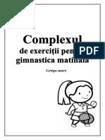 complexul de exerciții.docx