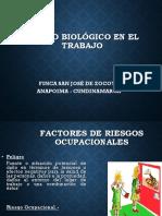 ANGIE Riesgos Biológicos