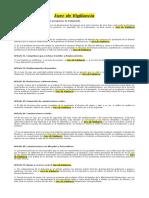 Juez de Vigilancia.pdf