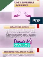 DONANTES DE OVULOS Y ESPERMA.pptx