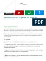 Sistema Nervioso_ Organización y Función