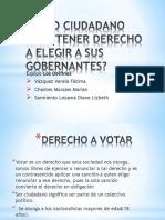 3G_todo ciudadano debe tener derecho a elegir a sus gobernantes. delfines_exposicion