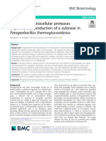 Extracellular proteases in P. thermoglucosidasius