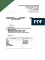 informe biologia celuasS