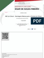 ABC Do Câncer Abordagens Básicas Para o Controle Do Câncer-Certificado 251