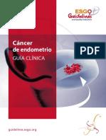 Endometrial Spanish