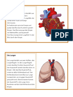 Infotexte Organe