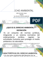 Diapositiva Derecho Ambiental