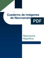 Cuaderno de Trabajo de Neuroanatomía -----.pptx