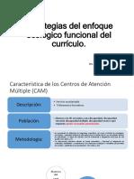 Estrategias Del Enfoque Ecológico Funcional Del Currículo SEGEY