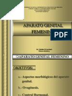 Tema 41- Aparato Genital Femenino