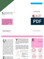 CA DE MAMA.pdf