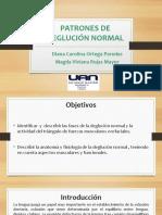 2 SEMINARIO Patrones de Deglucion Normal FINAL DV