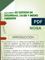 SISTEMA-DE-SEGURIDAD-NOSA.pptx