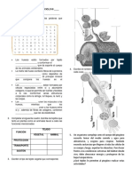 eval tejidos.pdf