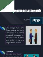Principios de Las Actividades Contractuales de Las Entidades Estatales en El Sector de La Economía.