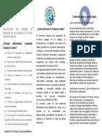 Comercio Justo (Maderna-DeLosSantos)