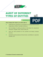audit of different entities.pdf