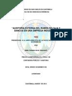 Auditoria Caso Practico en Banco y Caja